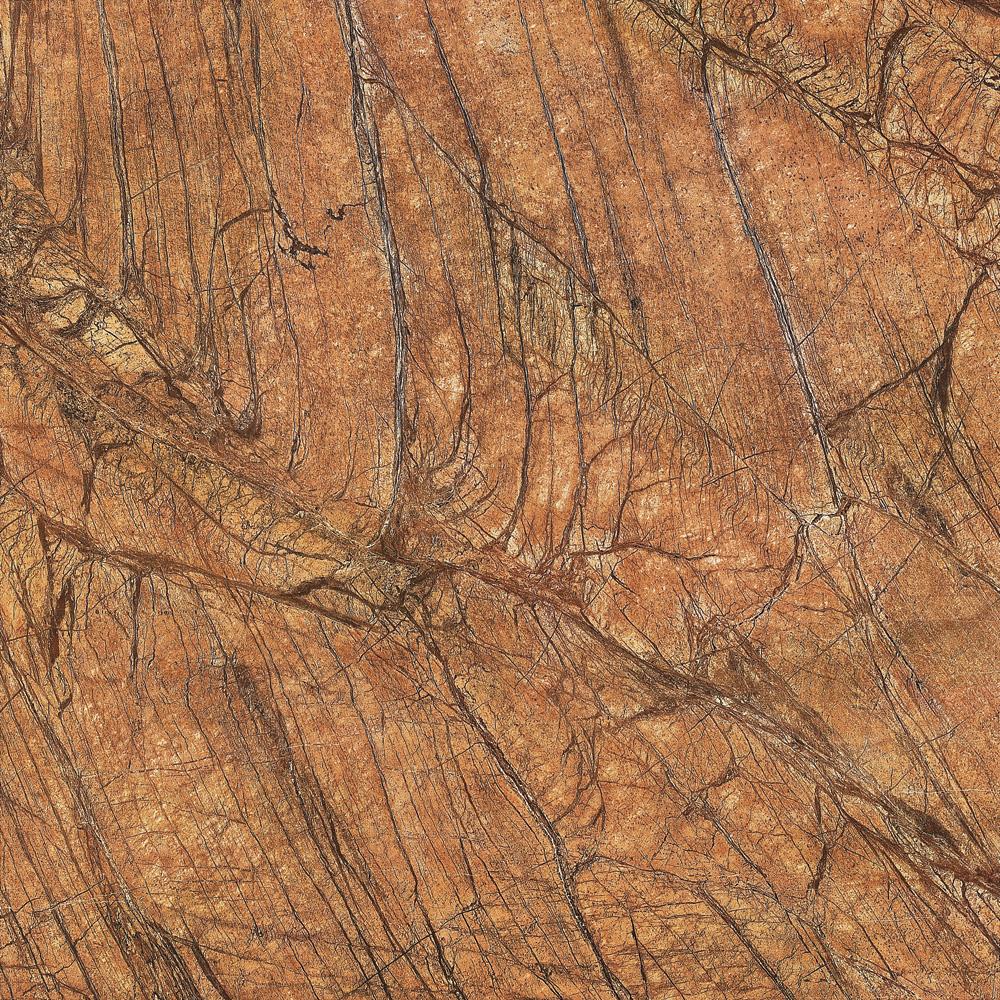 2-ASD8635P 雨林棕