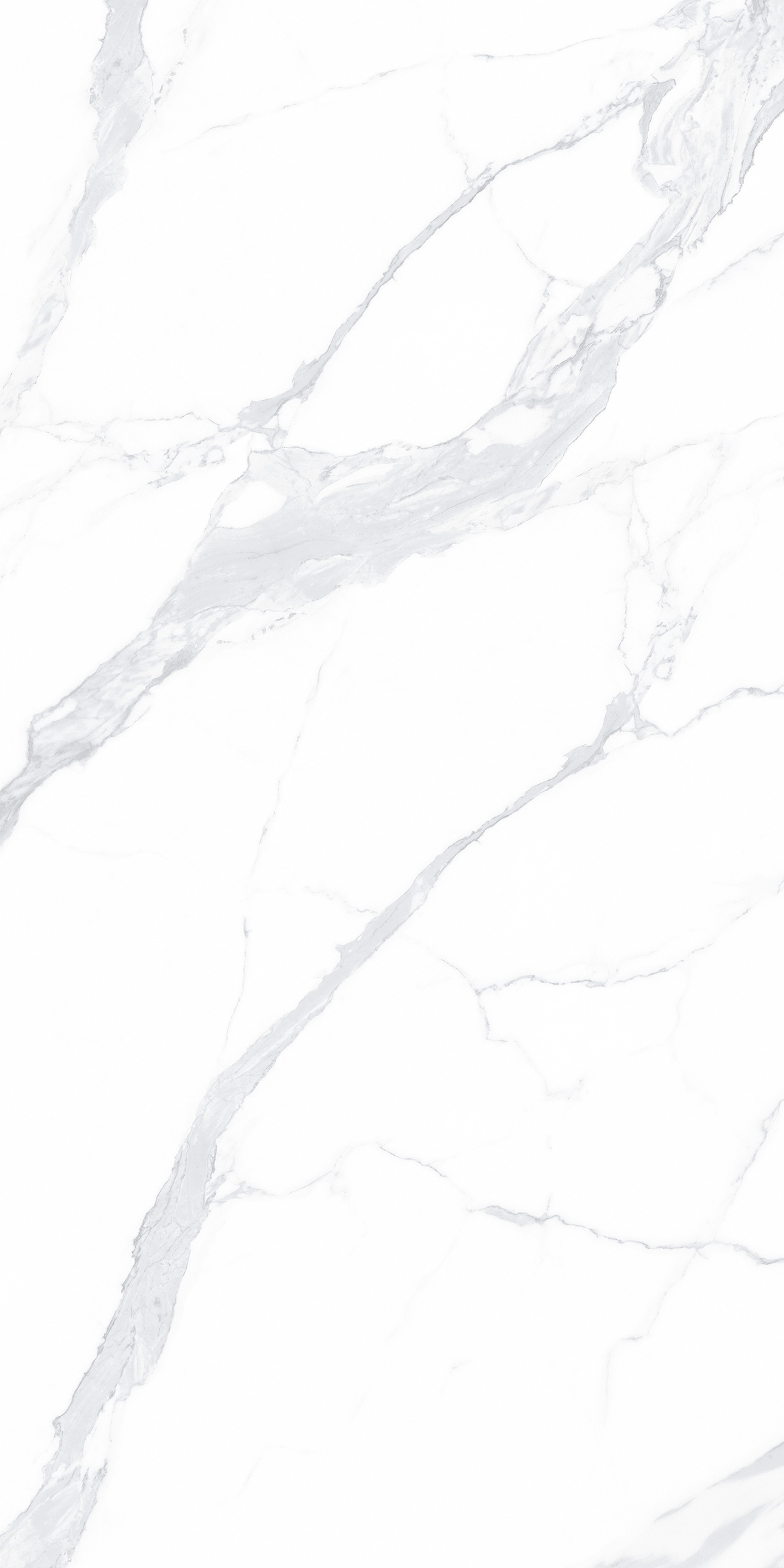 T18951 阿尔卑斯白